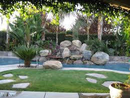 tropical landscape ideas for backyard with palm trees lestnic
