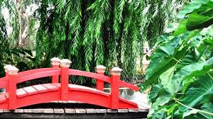 beautiful garden bridges landscaping design ideas romantic