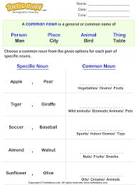 write the common noun for given proper noun worksheet turtle diary