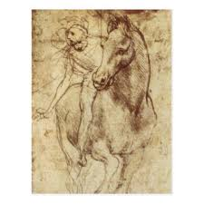 horse sketch postcards zazzle
