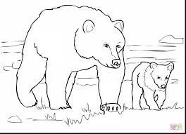 fabulous teddy bear clip art black white bear coloring