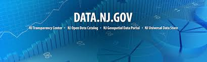 new jersey office of information technology