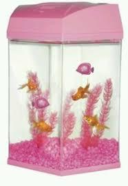 50 best fish tanks images on fish tanks aquarium