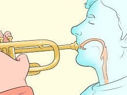 3 ways to play high notes on the trumpet wikihow