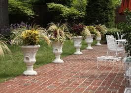 choose the best ornamental grass for your garden garden club