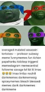 Subway Meme - overaged mutated assassin tortoises profesor subway meme