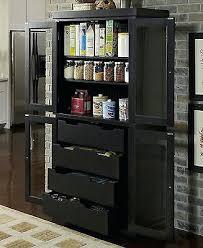 black kitchen storage cabinet black cabinet with door pure black transitional storage cabinet