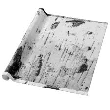birch tree wrapping paper tree bark wrapping paper zazzle