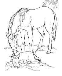 horse coloring mare sleeping foal horse stuffde