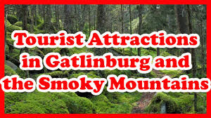 5 top rated tourist attractions in gatlinburg and the smoky