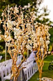 12 best money tree images on pinterest flower arrangements