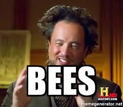 Aliens Meme Generator - bees ancient aliens meme generator