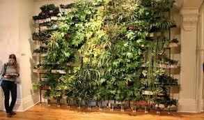 indoor apartment garden the indoor vegetable garden apartment therapy