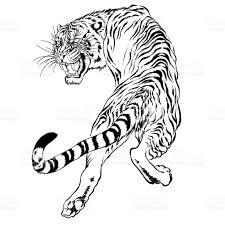 black and white drawing of a japanese tiger stock vector more