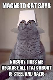 Magneto Meme - magneto cat says nobody likes me because all i talk about is steel