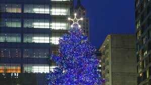 it u0027s official chicago has chosen their annual christmas tree