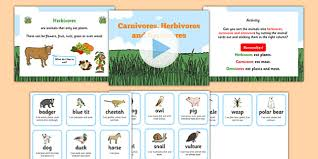 identifying herbivores carnivores and omnivores powerpoint task