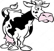 cartoon cow u2014 stock photo siart1 2861457