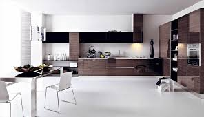Minimalist Modern Design White Modern Kitchen Designs Caruba Info