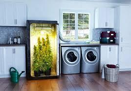 under cabinet grow light beginners growing marijuana indoors