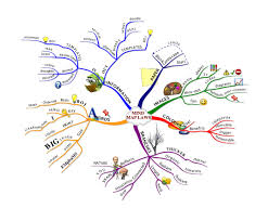 Blank Mind Map by Mind Mapping Examples Mind Mapping Examples For Students Mind