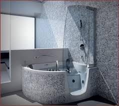 Step In Bathtub Step In Bathtubs With Shower Home Design Ideas