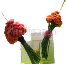 flowers in bulk buy wholesale ranunculus wedding flowers for sale bulk ranunculus