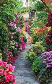 1290 best in the garden images on pinterest flowers plants and