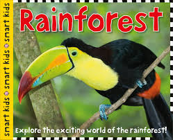 smart kids rainforest roger priddy 9780312517397 amazon com books