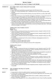 sle of resume third utility resume sles velvet