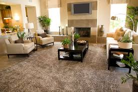 Big Living Room Rugs Home Ike U0027s Carpet Rug And Upholstery Cleaning Service