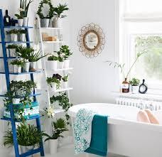 indoor plant display indoor garden ideas