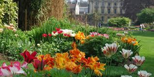 college gardens clare college cambridge