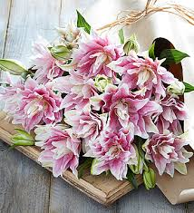Lily Bouquet Fall Tulip U0026 Lily Bouquet 1800flowers Com 159663