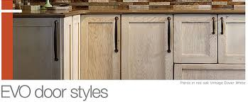 Styles Of Cabinet Doors Door Styles The Showplaceevo Access Cabinet Door Style Offering