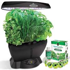amazon com aerogarden classic 6 with gourmet herb seed pod kit