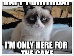 Grouchy Cat Meme - birthday grumpy cat meme 28 images funny birthday meme smile it