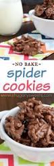 best 10 spider cookies ideas on pinterest spooky treats