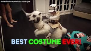 star wars u0027 costume wins halloween abc7 com