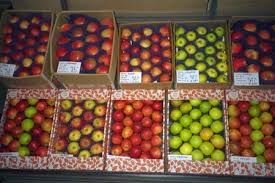fruit by mail park fruit farm mail order