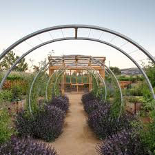 backyard farm design ideas sunset