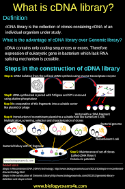 what is genomic library steps in the construction of genomic