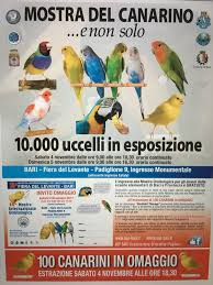 ingresso fiera levante bari 10mila uccelli alla fiera levante 4 e 5 novembre mostra