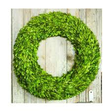 home decorators collection 24 in dia preserved boxwood wreath in