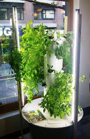 26 best hydroponics images on pinterest hydroponic gardening