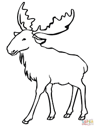 moose coloring pages arterey info