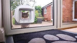 cat doors for glass doors putting a cat flap in a glass door