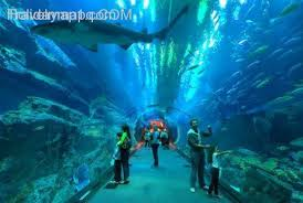 cool best family vacation spots holidaymapq family