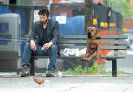 Keanu Reeves Memes - keanu reeves meme welcomes the sulking dog into the picture