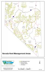 State Of Nevada Map by Programs Wild Horse And Burro Herd Management Herd Management